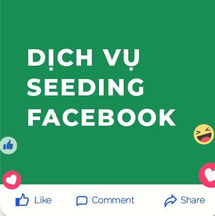 Dịch Vụ Seeding Facebook Uy tín Chất lượng - Công ty Tigobiz